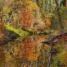 Fall Reflection in HDR by Diana Graves Photography