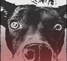 Monochrome Pop Art Dog by hashtagplasko