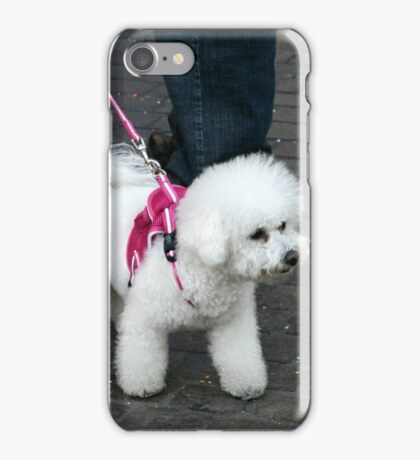 White Fluff Dog In Pink iPhone Case/Skin