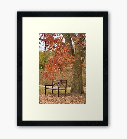 Fall's Saddness Framed Print