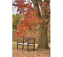 Fall's Saddness Photographic Print