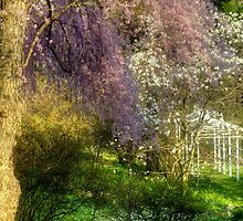 Colorful Trellis by Monica M. Scanlan