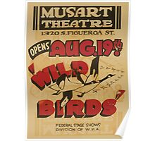 WPA United States Government Work Project Administration Poster 0791 Musart Theatre Wild Birds Poster