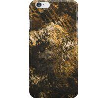 Winter Wattle iPhone Case/Skin