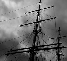 Sails in the storm by Lois Romer