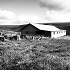 Old Farm Shed by Andrew (ark photograhy art)