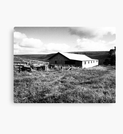 Old Farm Shed Canvas Print