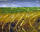 Harvesting wheat fields/ Gestroopte koringlande by Elizabeth Kendall