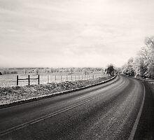 Road to Winter - post Missouri ice storm ,winter 07 by Jerald Johnson