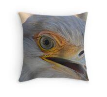 Eagle eye  - San Diego Zoo, CA Throw Pillow