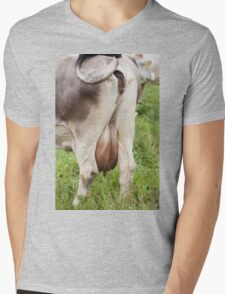 grazing cows on the mountain Mens V-Neck T-Shirt