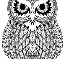 Long Eared Owl by Catie Atkinson