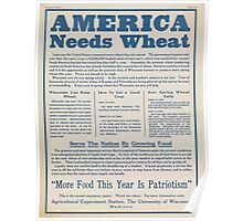 United States Department of Agriculture Poster 0284 America Needs Wheat More Food This Year is Patriotism Poster