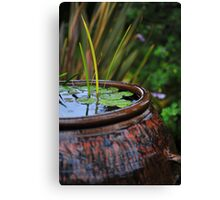 Small pond Canvas Print