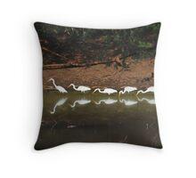 Egrets having their lunch Throw Pillow