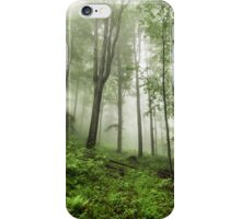 Beech forest iPhone Case/Skin