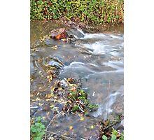Autumn Rush Photographic Print