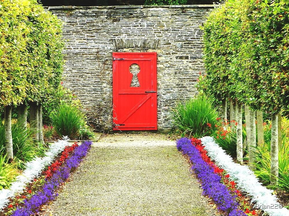 Keyhole View in the Vandeleur Garden, Kilrush. by Brian220