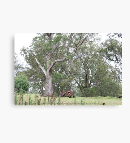 Abandoned Tractor and a Beautiful Tree Canvas Print