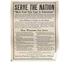 United States Department of Agriculture Poster 0286 Serve the Nation More Food This Year is Patriotism Poster