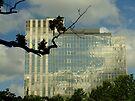 Transparent building by Themis