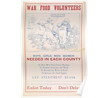 United States Department of Agriculture Poster 0223 War Volunteers Poster