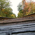 Above the Tracks by BShirey