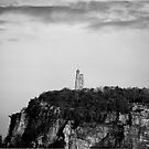 Skytop B/W by charlie murray