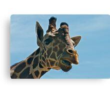 Giraffe SAYING Hello Canvas Print