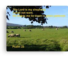 Restful Pastures Canvas Print