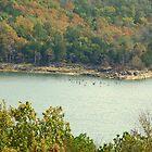 NW Arkansas' Beaver Lake, in need of rains by David  Hughes