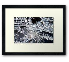 Ice flower Framed Print