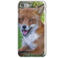 A fox is a wolf who sends flowers ... quote by  Ruth Weston iPhone Case/Skin