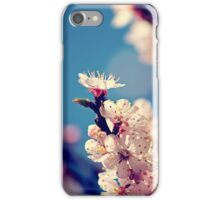Kissed by the sun iPhone Case/Skin