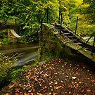 Swing Bridge by Brian Kerr
