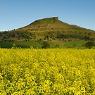 Roseberry Topping by Brian Kerr