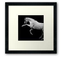 the prancing pony Framed Print