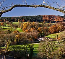 Withgill early one autumn morn' by Shaun Whiteman