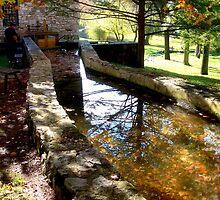 Burwell-Morgan Mill_1 by Hope Ledebur