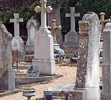 Headstones In Provence by phil decocco