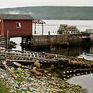 Fishing Dock - Newfoundland, Canada by Raymond J Barlow