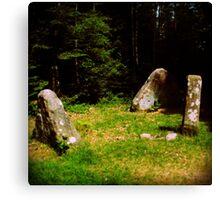 tlo 009 - les pierres magiques Canvas Print