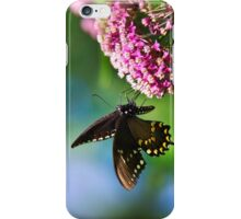 Colorful Spicebush Swallowtail Butterfly Art iPhone Case/Skin