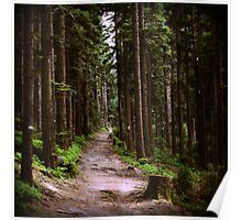 tlo 010 - la forêt Poster