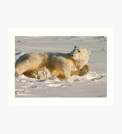 Hello. Care for a roll in the snow? Art Print