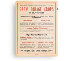 United States Department of Agriculture Poster 0205 Grow Forage Crops Sorghum Cowpeas Peanut Hay Beggarweed Native Grasses Metal Print