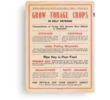 United States Department of Agriculture Poster 0205 Grow Forage Crops Sorghum Cowpeas Peanut Hay Beggarweed Native Grasses Canvas Print
