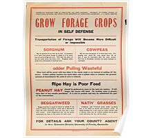 United States Department of Agriculture Poster 0205 Grow Forage Crops Sorghum Cowpeas Peanut Hay Beggarweed Native Grasses Poster