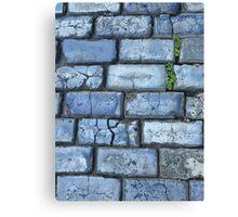 Blue cobblestones Canvas Print