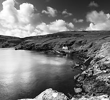 Coastline at Torr Head, Ireland.  by Fred Taylor